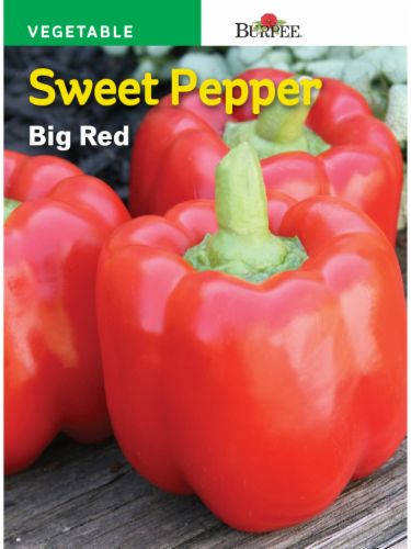 Burpee  Big Red Sweet Pepper Seeds - Red Perspective: front