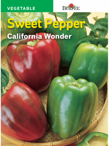 Burpee California Wonder Sweet Pepper Seeds - Red/Green Perspective: front