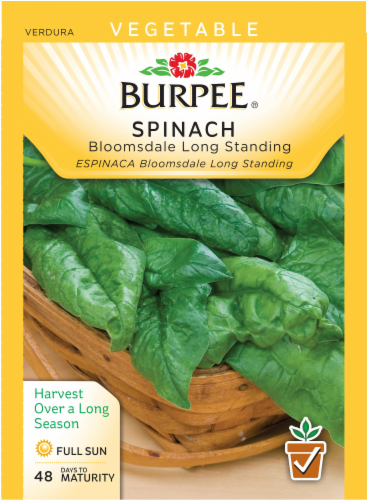 Burpee Bloomsdale Long Standing Spinach Seeds - Green Perspective: front