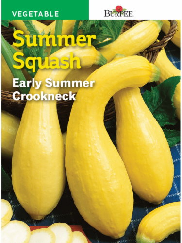 Burpee Early Summer Golden Crookneck Squash Seeds - Yellow Perspective: front