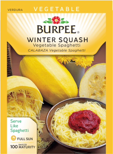 Burpee Vegetable Spaghetti Winter Squash Seeds Perspective: front