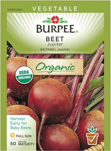 Burpee Jupiter Organic Beet Seeds Perspective: front