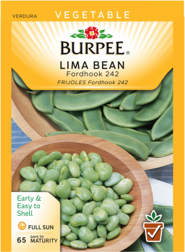 Burpee Fordhook 242 Lima Bush Bean Seeds - Green Perspective: front