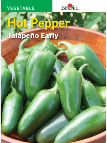 Burpee Early Hot Jalapeno Seeds Perspective: front