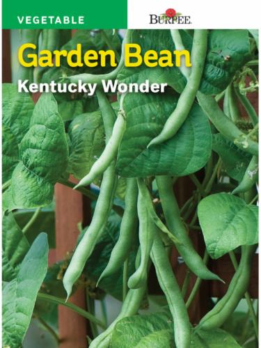 Burpee Kentucky Wonder Bean Seeds Perspective: front