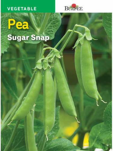 Burpee Sugar Snap Pea Seeds Perspective: front