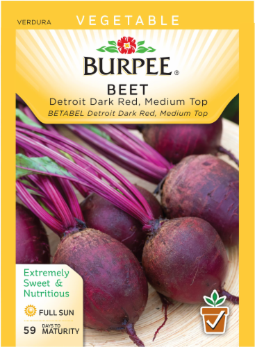 Burpee Detroit Dark Red Medium Top Beet Seeds Perspective: front