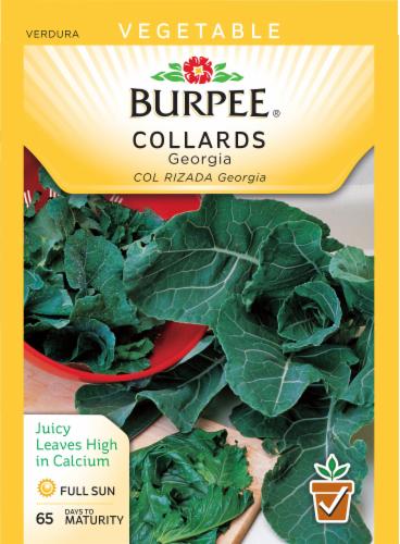 Burpee Georgia Collard Seeds Perspective: front