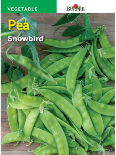 Burpee Snowbird Pea Seeds Perspective: front