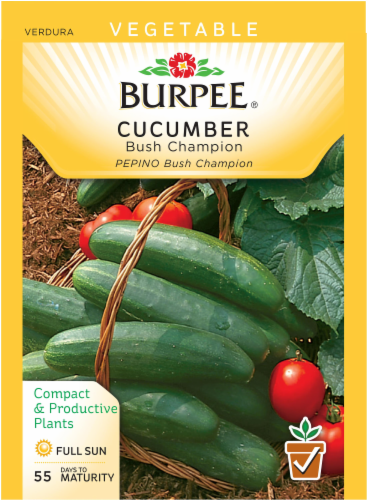 Burpee Bush Champion Cucumber Seeds - Green Perspective: front