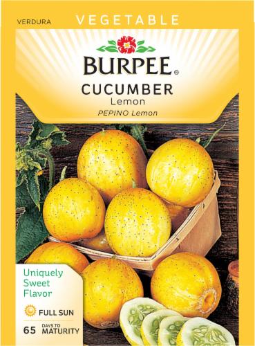 Burpee Lemon Cucumber Seeds Perspective: front