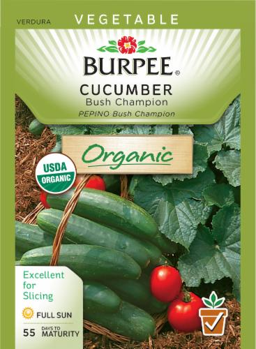 Burpee Bush Champion Organic Cucumber Seeds Perspective: front