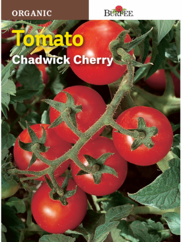 Burpee Chadwick Cherry Organic Tomato Seeds - Red Perspective: front