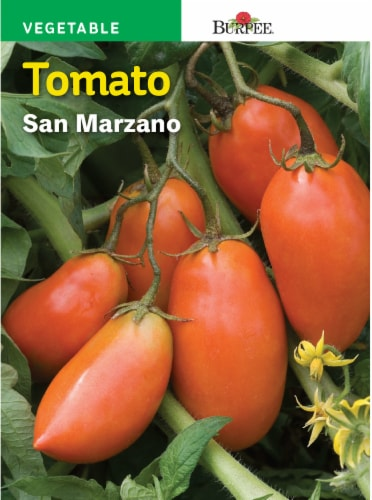 Burpee San Marzano Tomato Seeds - Red Perspective: front