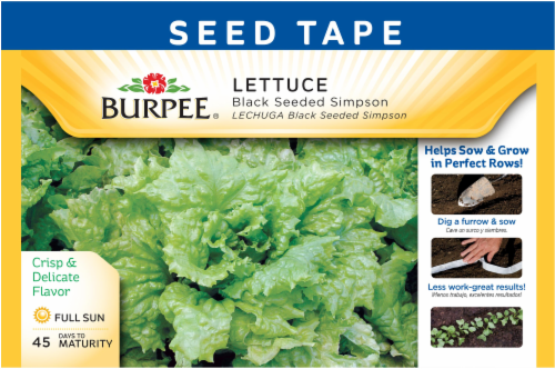 Burpee Black Seeded Simpson Lettuce Seed Tape Perspective: front