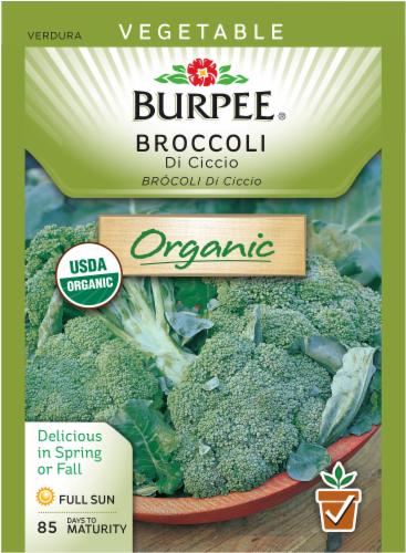 Burpee De Cicco Heirloom Broccoli Seeds Perspective: front