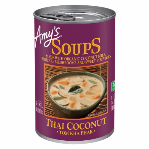 Amy's Thai Coconut Soup Perspective: front
