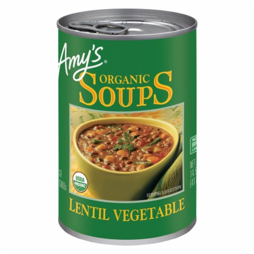 Amy's Organic Lentil Vegetable Soup Perspective: front