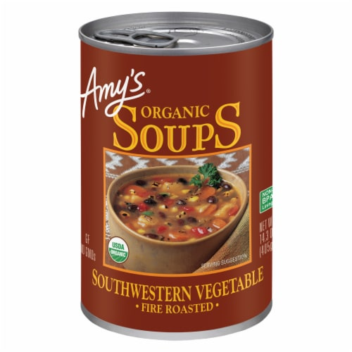 Amy's Organic Fire Roasted Southwestern Vegetable Soup Perspective: front