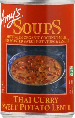 Amy's Thai Curry Sweet Potato Lentil Soup Perspective: front