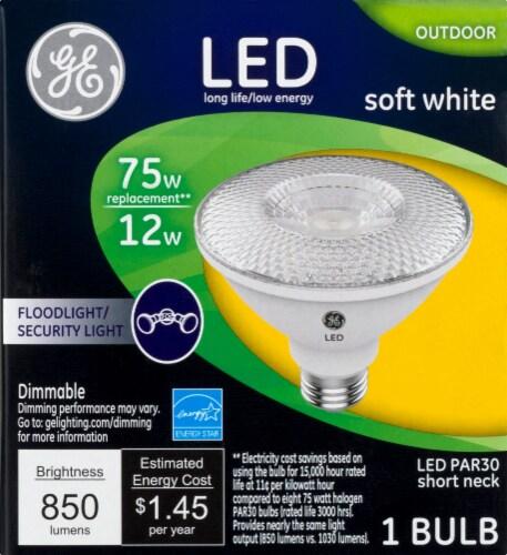 GE 12-Watt (75-Watt) Medium Base PAR30 Outdoor LED Flood and Security Light Bulb Perspective: front