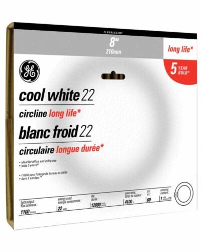 GE Cool White 22-Watt Light Bulb Perspective: front