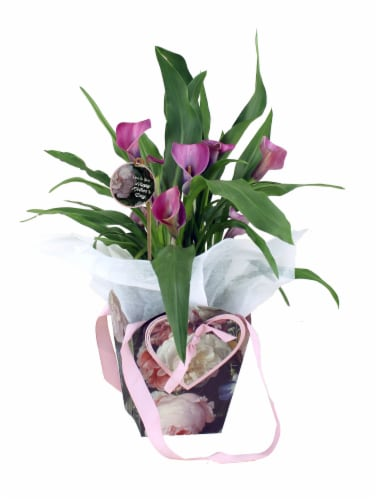 Calla Lily Gift Bag Perspective: front