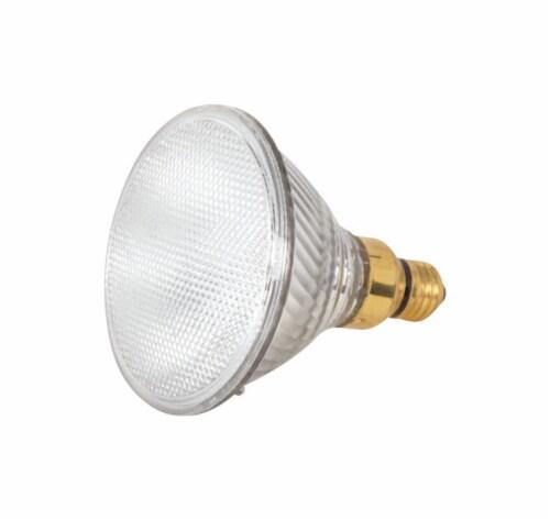 Satco 39 watts PAR38 Floodlight Halogen Bulb 530 lumens Warm White 1 pk - Case Of: 1; Each Perspective: front