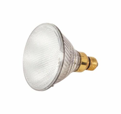 Satco 60 watts PAR38 Floodlight Halogen Bulb 1,090 lumens Warm White 1 pk - Case Of: 1; Each Perspective: front