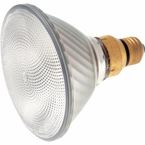 Satco 60w Par38 30k Hal Bulb S2248 Perspective: front