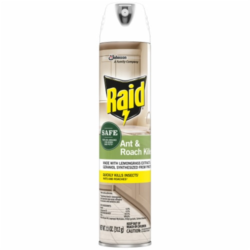 Raid® Ant and Roach Killer Perspective: front