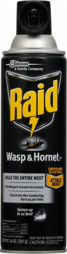 Raid® Wasp and Hornet Insecticide Perspective: front