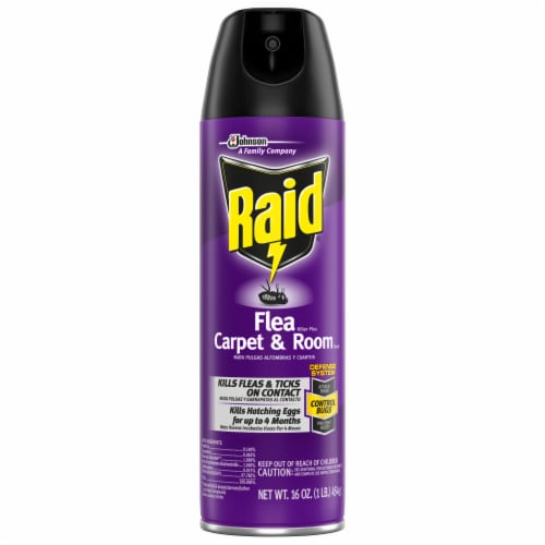 Raid® Carpet and Room Flea Killer Perspective: front