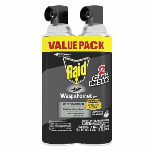 Raid® Wasp and Hornet Spray Value Pack Perspective: front