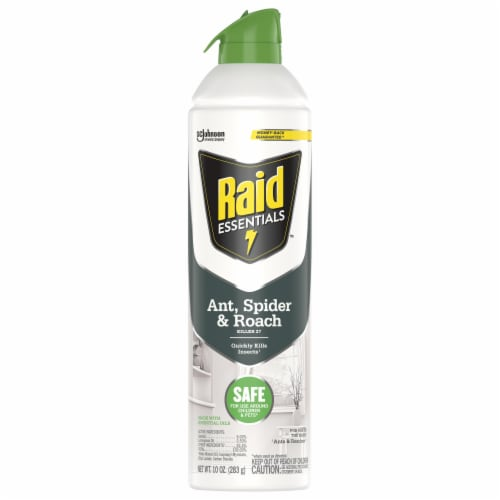 Raid® Essentials Ant Spider and Roach Killer Aerosol Perspective: front