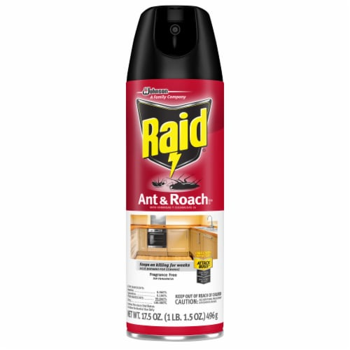 Raid® Fragrance Free Ant & Roach Killer Perspective: front