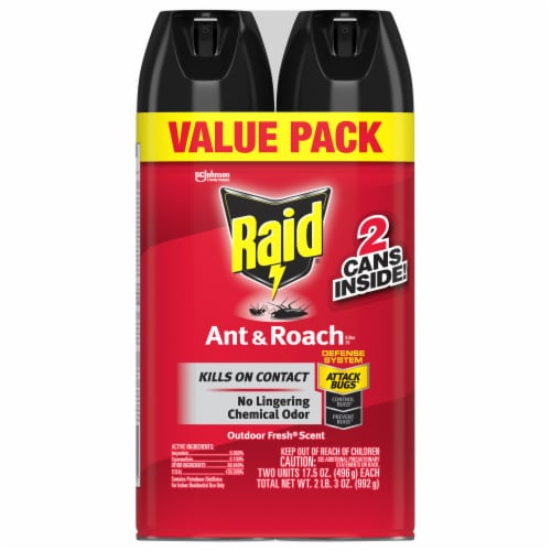 Raid® Outdoor Fresh Scent Ant and Roach Killer Spray - 2 Pack Perspective: front