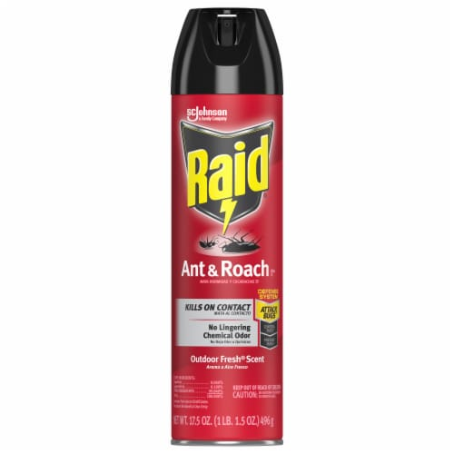 Raid® Outdoor Fresh Scent Ant & Roach Killer Perspective: front