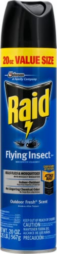 Raid® Flying Insect Killer Perspective: front