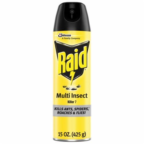 Raid® Multi Insect Killer Aerosol Spray Perspective: front