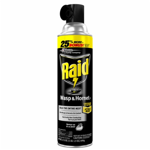 Raid® Wasp and Hornet Insecticide Spray Perspective: front