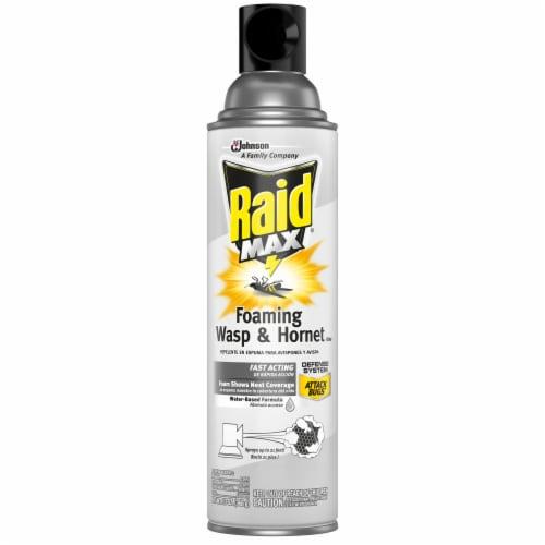 Raid® Max Foaming Wasp & Hornet Killer Perspective: front