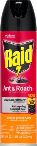 Raid Orange Breeze Scent Ant and Roach Killer Perspective: front