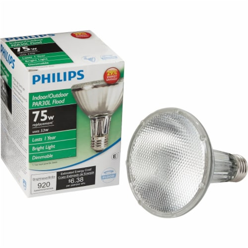 Philips 53-Watt (75-Watt) PAR30 Halogen Floodlight Bulb Perspective: front