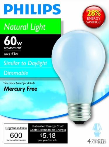 Philips 43-Watt (60-Watt) Medium Base A19 Light Bulbs Perspective: front