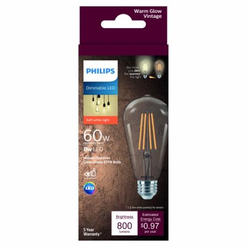 Philips 8-Watt (60-Watt) Indoor/Outdoor Clear Glass ST19 Light Bulb Perspective: front