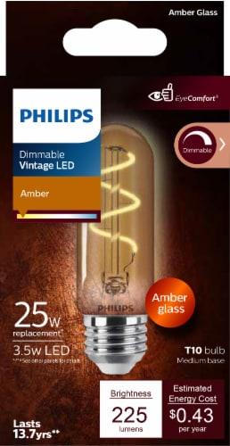 Philips 3.5-Watt (25-Watt) Medium Base T10 Vintage LED Light Bulb Perspective: front