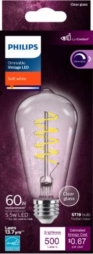 Philips 5.5-Watt (60-Watt) Medium Base ST19 Vintage LED Light Bulb Perspective: front
