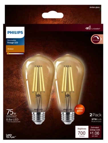 Philips 8.8-Watt (75-Watt) Medium Base ST19 Vintage LED Light Bulbs Perspective: front