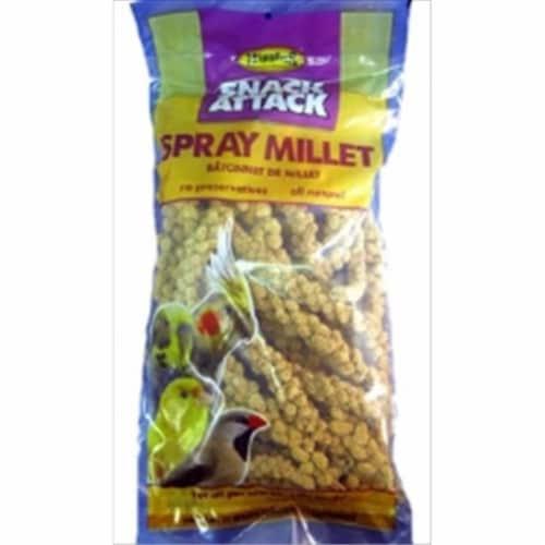 Higgins Pet Food HS60003 Sunshine Spray Millet - 6 Count Perspective: front